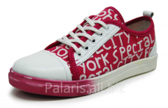 Sneakers on a flypaper of Palaris 2022-366316B,
