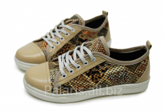 Sneakers on Palaris 2022-366716 flypaper, the