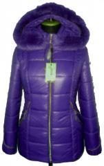 Яркая зимняя куртка Лак 39 фиалка.