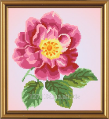 The scheme for beadwork a dogrose Flower the