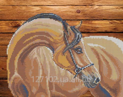 The scheme for beadwork my horse S-014 Product