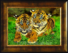 The scheme for beadwork of Steam of tiger cubs