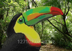 The scheme for beadwork the Owner of tropics