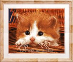 The scheme for beadwork the Red kitten SB-171
