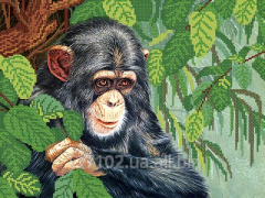 The scheme for beadwork the Monkey RKP-130 Product