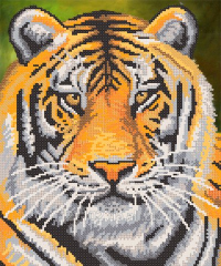 The scheme for beadwork the Tiger RKP-245 Product