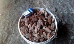 Mulch, bark pine