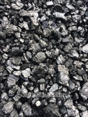 Coal sale Anthracite Nut (AN) of 3000 UAH/