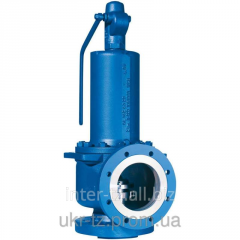 Safety valve flange DN 40