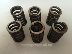 Springs of coupling 175N