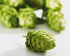 Hop, cones
