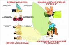 Стенд Непрямой массаж сердца. Освобождение дыхательных путей от инородных тел