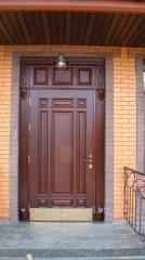 Door entrance of a natural tree
