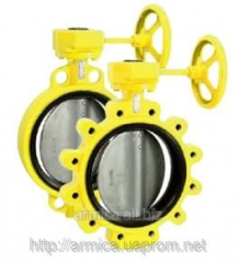 Lock disk rotary type butterfly stroke for gas,