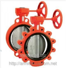 Lock disk rotary type butterfly stroke for fire