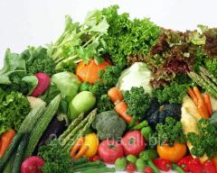 Vegetables ogorodny