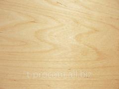 Plywood for production shtantsform
