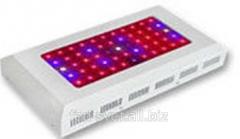 LED phytolamp of 165 W of Bellson