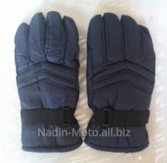 Gloves are alpine skiing