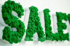 Eko logos from a decorative moss. Freshness till