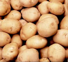 Potatoes high-quality from the producer, sale,