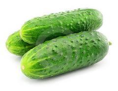 Огурцы свежие зеленые