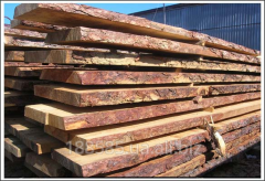 Complete timber, not cut boards for production of