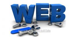 Development of the website