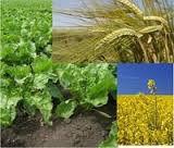 (Nurel d) to buy Shtefotrut's insecticide