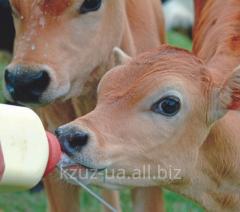 Замінники незбираного молока