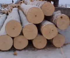 Wood toplyakovy, wood fuel, forest products
