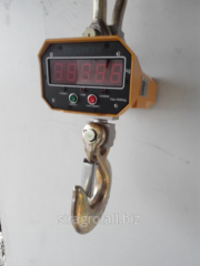 Crane scales na10t with the remote control