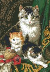 Cat and kittens Rkan 3010
