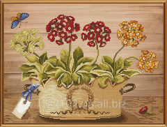 Set for an embroidery Flowers of spring of NND