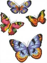 The scheme for an embroidery of the Butterfly.