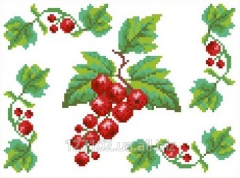 The scheme for an embroidery Currant. Flizelin