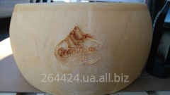 Сир пармезан грано падано Італія