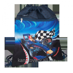 Bag for the CHAMPION footwear