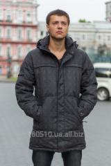 Man's short coat (hollofayber)