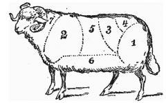 Бедро баранье. Баранина. Мясо баранина.