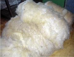 Шерсть овечья. Продукция собственного