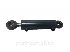Hydraulic cylinder of back hinge plate 100.50.250