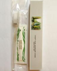 Disposable tooth sets (a schetka, pass toothpaste)