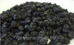 Black-fruited mountain ash - dried