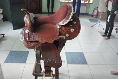 Saddle for a horse and a horse