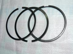 Piston rings of Xingtai