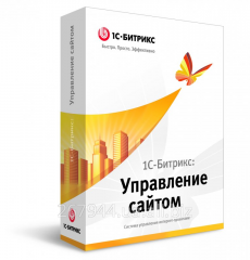 1C-Bitriks: Management of the website