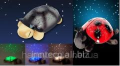 Night lamp turtle Star Sky