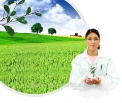 Herbicide of the Torero k.s.