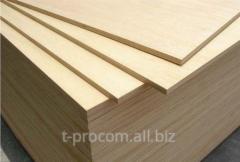 FSF plywood of birch 1220*2440 mm With/with